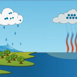 The Water Cycle – How rain is formed