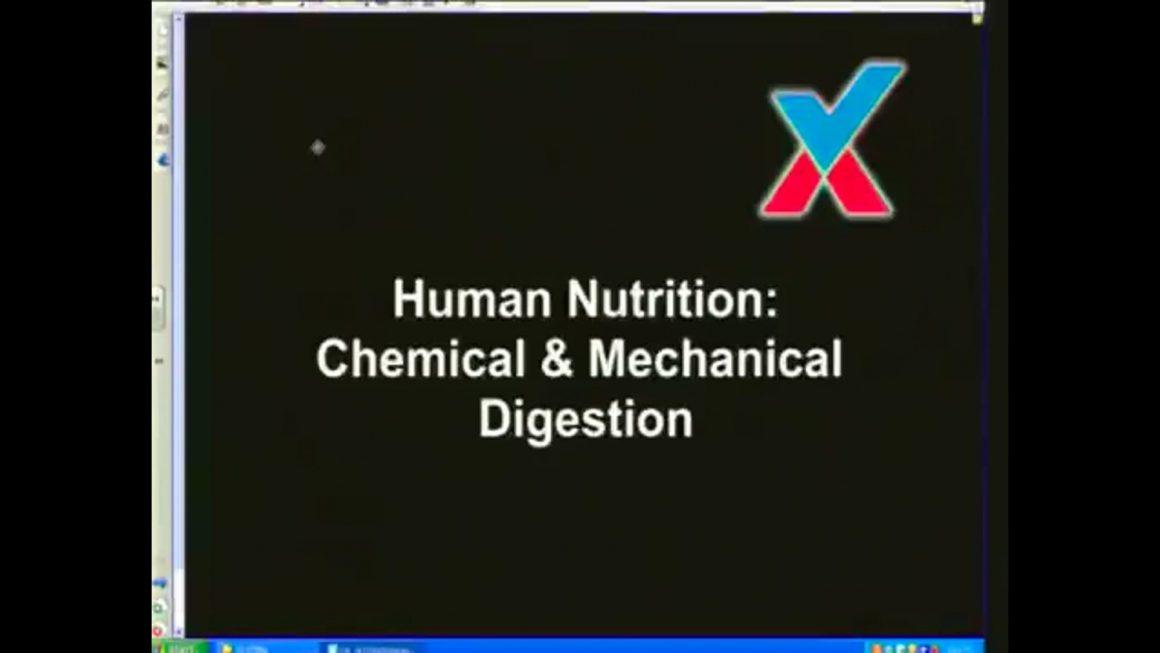 13 Human Nutrition I – Mechanical & Chemical Digestion