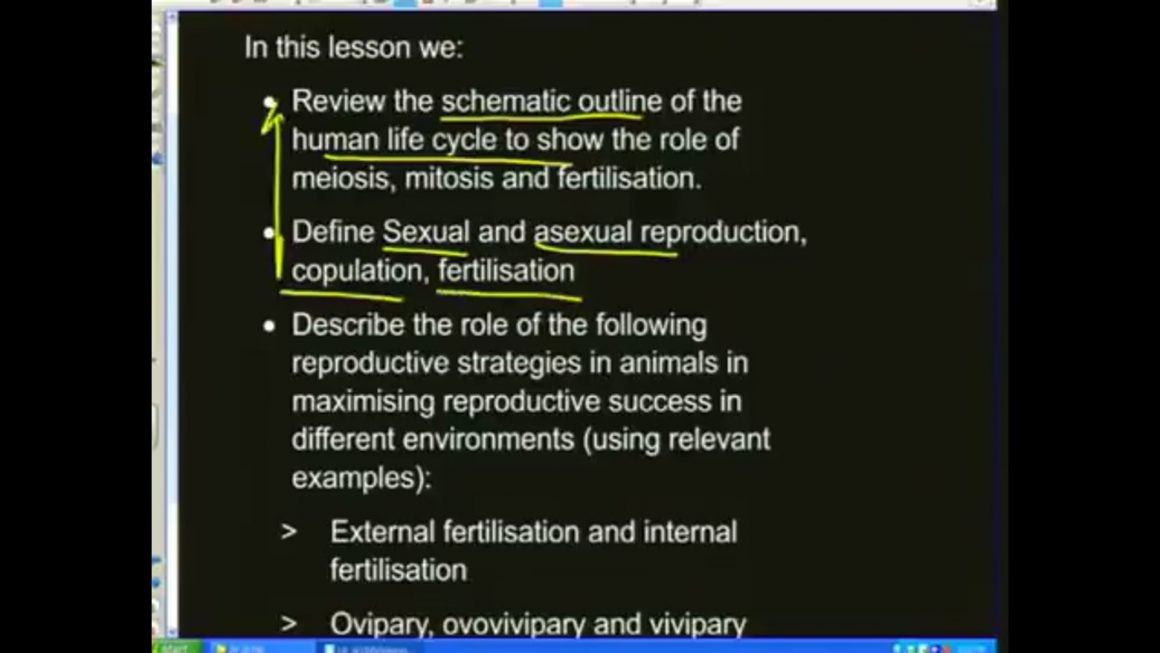 04 Reproduction in Vertebrates
