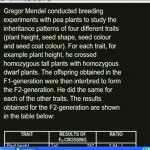 12 Revision – Genetics
