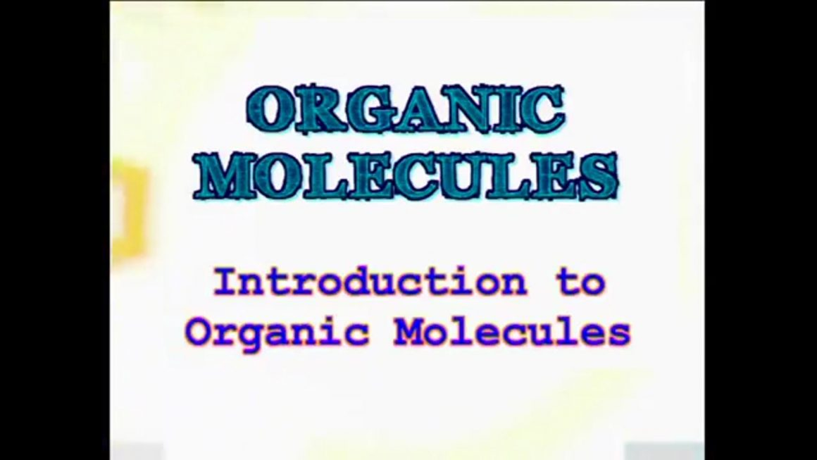13 Introduction to Organic Molecules