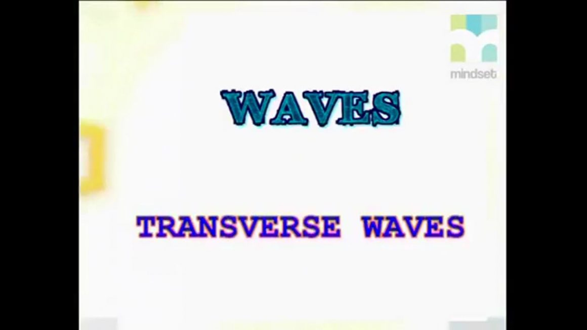 38 Transverse waves