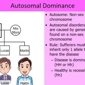 Autosomal dominance inheritance – story based
