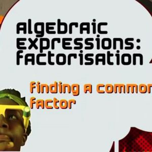 07 Finding a Common Factor